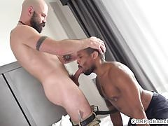 Bald bear doggystyle assfucking ebony stud | Porn-Update.com