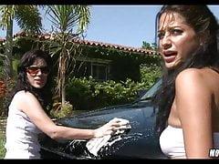 Kuguary myjni samochodowej
