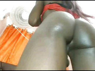 Shemale Porn Shemale Big Cock Shemale Black And Ebony Shemale video: Hot ebony gurl