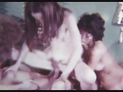 Wild Ride (années 1970)