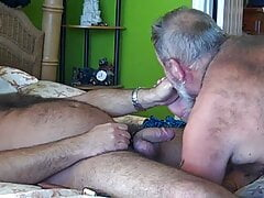 Feasting a delicious Bear cock