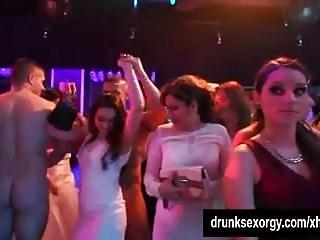 Bi sexual slags party...
