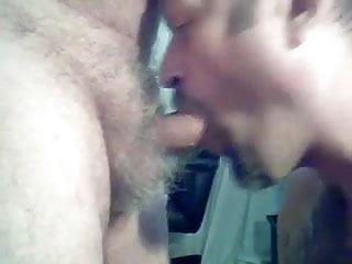Bear blowjobs 13...