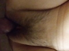 Bear teasing tight pussy with small thick cock