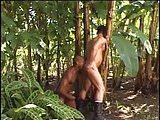Sexo gay no mato