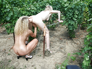 Amateur moms with boy in vineyard
