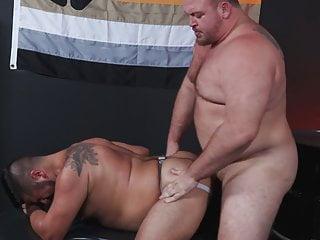 Hairy papa bears gaying around...